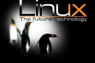 کار گاه لینوکس