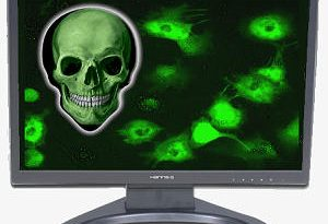 ویروس رایانه