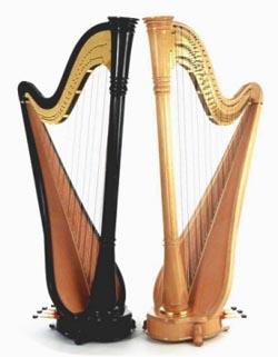 موسیقی و ساز های ایرانی