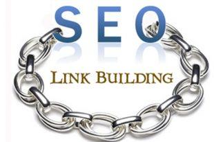 link building 310x205 - back link چیست