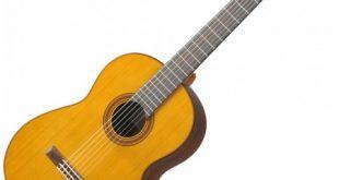 مخترع ساز گیتار