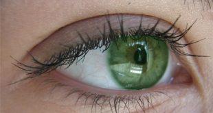 7 آموزش تغییر رنگ چشم کمتر از یک دقیقه با فتوشاپ 310x165 - آموزش تغییر رنگ چشم در فتوشاپ