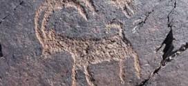 وقایع عصر حجر