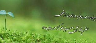 farhang14 310x140 - سیزده بدر در شعر استاد شهریار