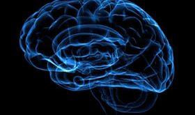 hhh1060 280x165 - اولین علامت تومور مغزی