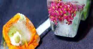 dthtyhtdh 310x165 - نحوه تزیین یخ با گل و تمشک