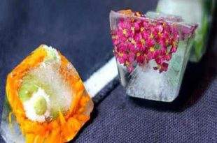 dthtyhtdh 310x205 - نحوه تزیین یخ با گل و تمشک