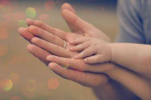 en5903 310x205 - مهر مادر عشق پدر