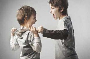 ra4 4312 1 310x205 - علائم و درمان اختلال سلوک در کودکان