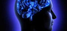 ارتباط تغذیه و اعصاب و روان
