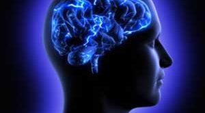 ra4 4336 300x165 - ارتباط تغذیه و اعصاب و روان