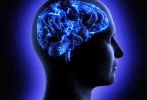 ra4 4336 300x205 - ارتباط تغذیه و اعصاب و روان