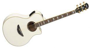 تاریخچه گیتار سیر تاریخی , اجزای گیتار, انواع گیتار ,گیتار با بدنه چوبی توخالی, انواع گیتارهای آکوستیک ,انواع گیتارهای کلاسیک, انواع گیتارهای الکتروآکوستیک, گیتار با بدنه چوبی نیمه خالی , گیتار با بدنه چوبی توپر ,